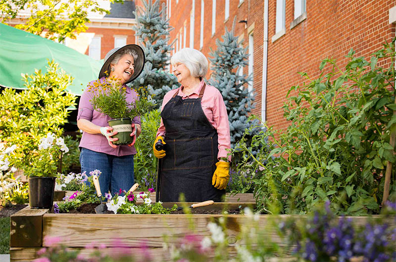 two female residents of 10 wilmington place smile and laugh as they plant flowers in a small bed