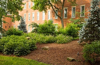 Clean, Crisp, maintained campus at 10 Wilmington Place